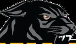 Pv panther